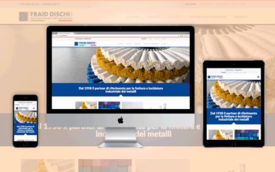 Sito Web responsive Fraid Dischi